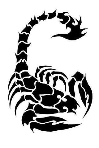 纹身图案:狼,龙,蛇,鱼,蝎子,蜥蜴,老鹰,蝴蝶,狮子,骷髅,脉兽,蜘蛛